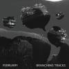 "FEBRUARY ""Branching Tracks"" [LP, 2018]"
