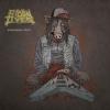 """STOLEN LIVES """"Budoucnost sviní"""" [CD, 2015]"""