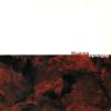 "BLOODSHED ""Skullcrusher"" [7"" EP, 2001]"