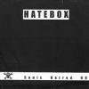 "HATEBOX ""s/t"" | N.O.Y.F.B. ""s/t"" [split 7"" EP, 1999]"