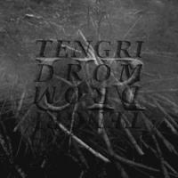"DROM | TENGRI ""UR"" [split LP, 2020]"